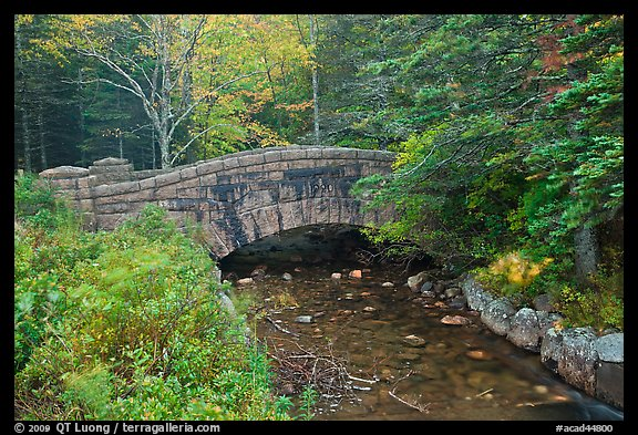 Carriage road bridge crossing stream. Acadia National Park (color)