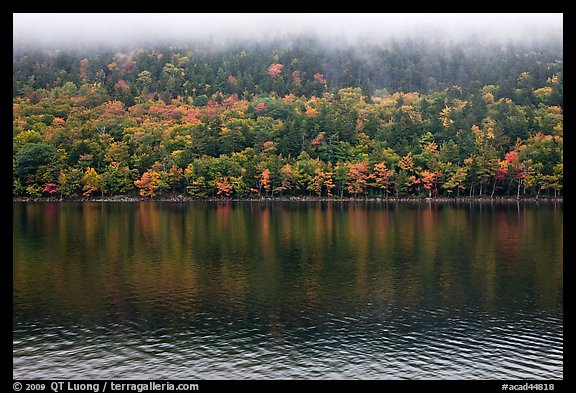Trees in fall colors reflected in Jordan Pond. Acadia National Park (color)