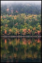 Hillside in autumn foliage mirrored in Jordan Pond. Acadia National Park, Maine, USA.