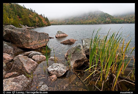 Jordan pond shore in a fall misty day. Acadia National Park (color)