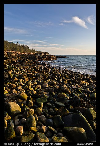 Round bouders, low tide coastline, Schoodic Peninsula. Acadia National Park (color)