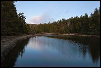 Pond and trees, Schoodic Peninsula. Acadia National Park, Maine, USA.