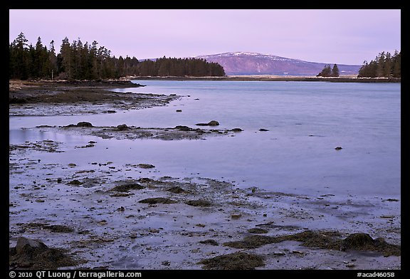 West Pond and snowy Cadillac Mountain, dawn, Schoodic Peninsula. Acadia National Park (color)