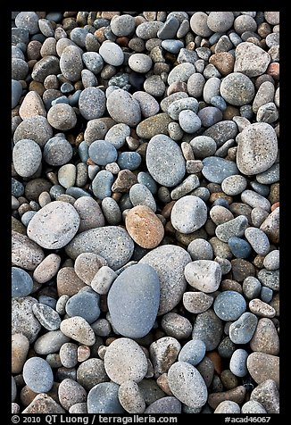 Close-up of smooth pebbles, Schoodic Peninsula. Acadia National Park (color)