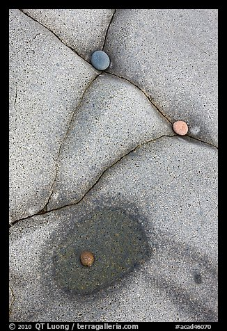 Close-up of pebbles and rock cracks, Schoodic Peninsula. Acadia National Park (color)