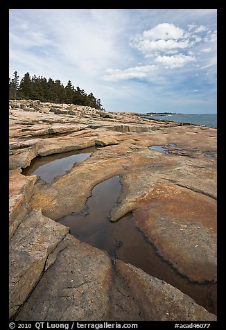 Slabs and puddles near Schoodic Point. Acadia National Park (color)