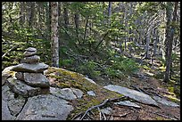 Cairn on trail, Isle Au Haut. Acadia National Park ( color)