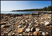 Stream on Barred Harbor beach, Isle Au Haut. Acadia National Park, Maine, USA. (color)