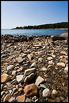 Streams flows into cove, Isle Au Haut. Acadia National Park, Maine, USA. (color)