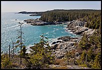 Coastline seen from Goat Trail, Isle Au Haut. Acadia National Park, Maine, USA.