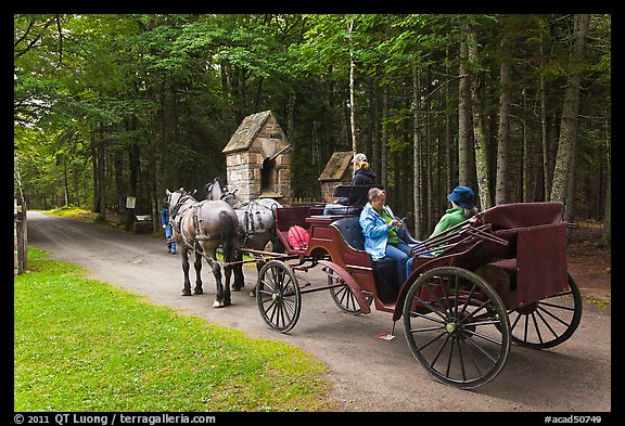 Horse carriage. Acadia National Park, Maine, USA.