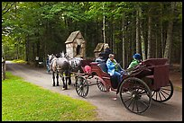 Horse carriage. Acadia National Park, Maine, USA. (color)