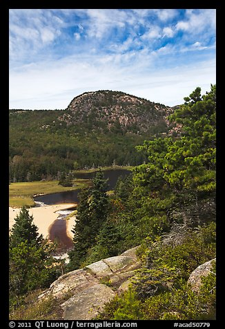 Tidal creek and Behive. Acadia National Park (color)