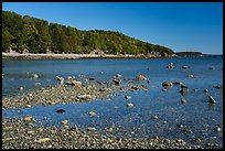 Bar Harbor Island at low tide. Acadia National Park ( color)