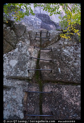 Iron rungs, Precipice Trail. Acadia National Park (color)