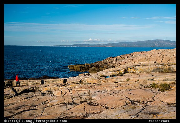 Visitor looking, Schoodic Point. Acadia National Park (color)