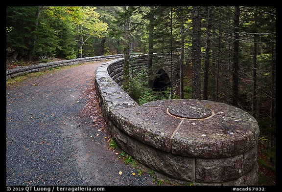 Carriage road over Hemlock Bridge. Acadia National Park (color)