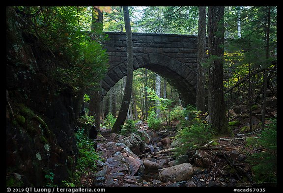Hemlock Bridge over Maple Spring Brook. Acadia National Park (color)