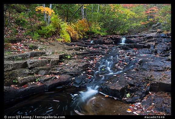 Duck Brook cascades and autumn foliage. Acadia National Park (color)
