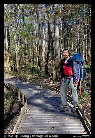 Hiker with backpack standing on boardwalk. Congaree National Park (color)