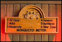 New mosquito meter. Congaree National Park ( color)