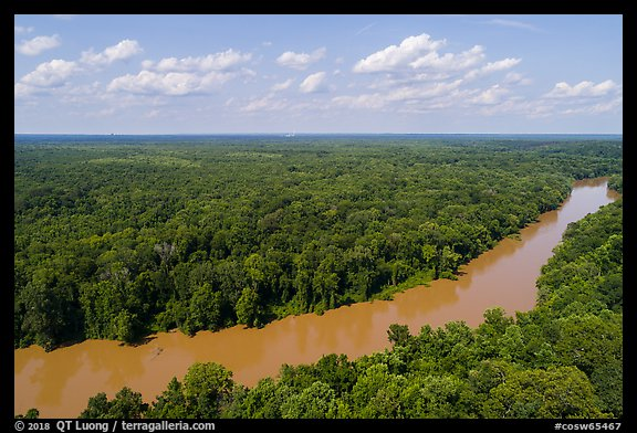 Aerial view of Congaree River. Congaree National Park (color)