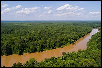 Aerial view of Congaree River. Congaree National Park ( color)