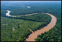 Aerial view of bends of the Congaree River. Congaree National Park ( color)
