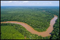 Aerial view of Congaree River bend. Congaree National Park ( color)