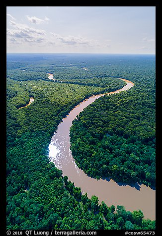 Aerial view of Congaree River with meanders. Congaree National Park (color)