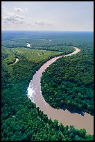 Aerial view of Congaree River with meanders. Congaree National Park ( color)