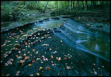 Cascades and fallen leaves. Cuyahoga Valley National Park ( color)