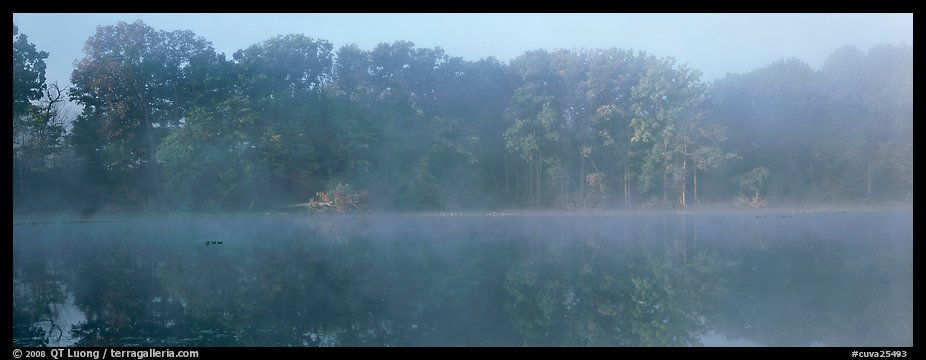 Trees reflected in foggy pond. Cuyahoga Valley National Park (color)
