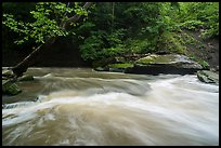 Tinkers Creek cascade, high flow, Bedford Reservation. Cuyahoga Valley National Park ( color)
