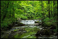 Deerlick Creek with cascade, Bedford Reservation. Cuyahoga Valley National Park ( color)