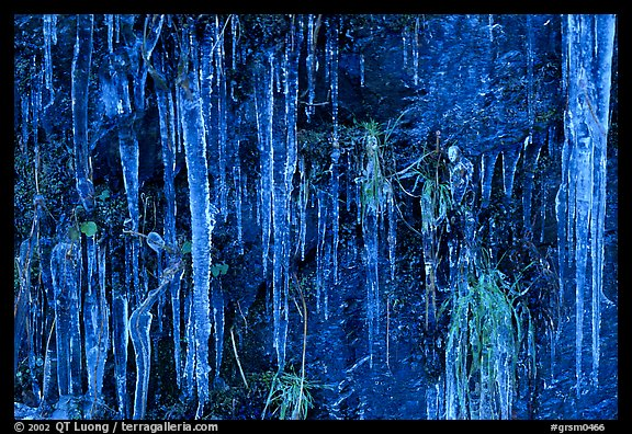 Icicles curtain, Tennessee. Great Smoky Mountains National Park, USA.