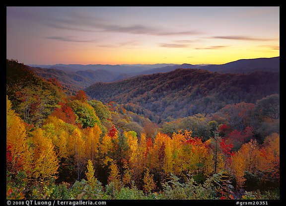 Row of trees, valley and ridges in fall color at sunset, North Carolina. Great Smoky Mountains National Park (color)