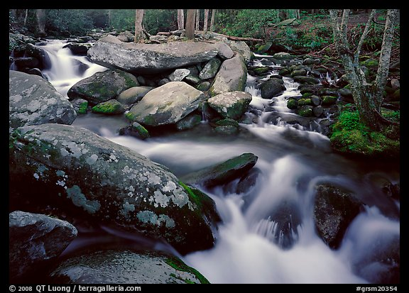 Stream, boulders, and trees, Roaring Fork, Tennessee. Great Smoky Mountains National Park (color)
