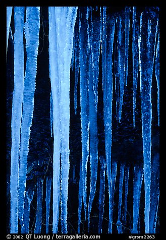 Icicles close-up, Tennessee. Great Smoky Mountains National Park (color)