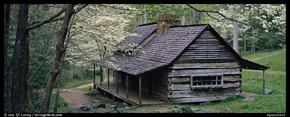 Pioneer cabin in the spring. Great Smoky Mountains National Park (color)