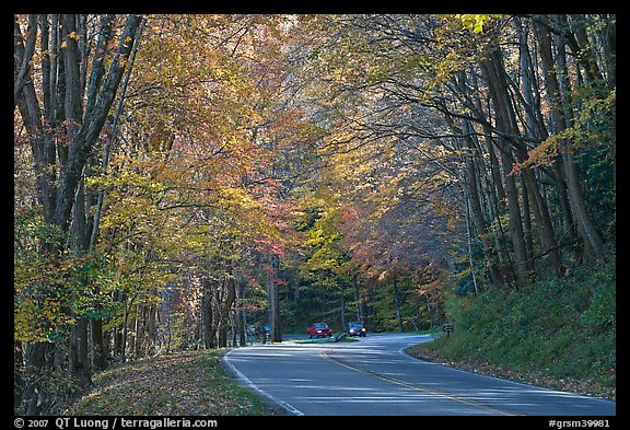 Newfoundland Gap road during the fall, Tennessee. Great Smoky Mountains National Park (color)