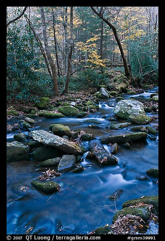Stream in autumn, Roaring Fork, Tennessee. Great Smoky Mountains National Park (color)
