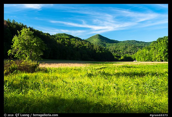 Meadow, Cataloochee Valley, North Carolina. Great Smoky Mountains National Park (color)