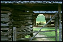 Historic barns, Cades Cove, Tennessee. Great Smoky Mountains National Park, USA. (color)