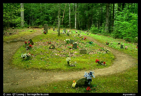 Pioneer Cemetery in forest clearing, Greenbrier, Tennessee. Great Smoky Mountains National Park (color)