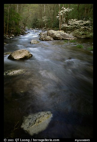 Flowing water, Middle Prong of the Little River, Tennessee. Great Smoky Mountains National Park (color)