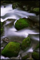 Mossy boulders and silky water, Roaring Fork River, Tennessee. Great Smoky Mountains National Park, USA. (color)
