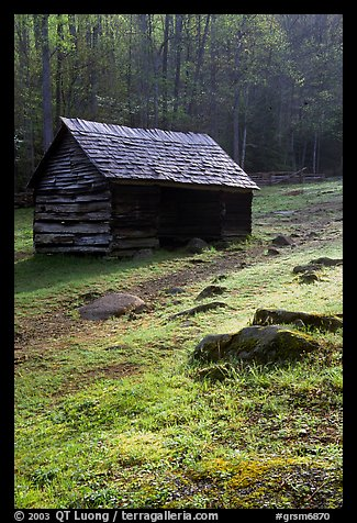 Cabin at Jim Bales place, early morning, Tennessee. Great Smoky Mountains National Park (color)