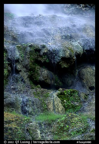Thermal springs flowing over tufa terrace. Hot Springs National Park (color)