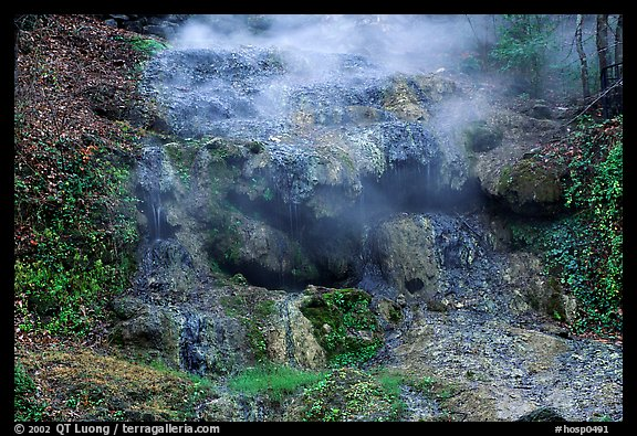 Thermal spring water flowing over tufa terrace. Hot Springs National Park (color)